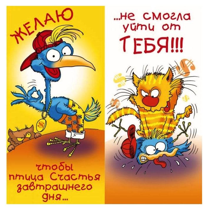 Забавная открытка : Поздравление с Днём Рождения Мужчине